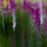 Slow shutter subject or camera movement #10