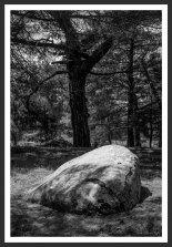 Boulder #2, Mt. Ida (2012)