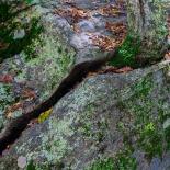 Stepstone Falls #01