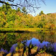 Arcadia State Park #06