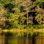 Arcadia State Park #05