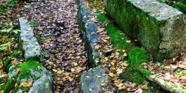 Stepstone Falls #04