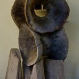 Wooden Vertebrae