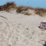 Signs buried under sand
