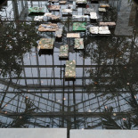 Reflecting Pool, A. C. Ekin