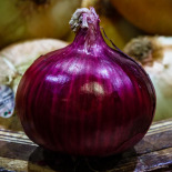 Onions are photogenic