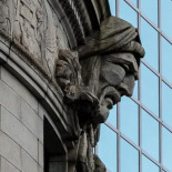 The profile of the Turk's Head