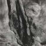 Paul Strand - Driftwood