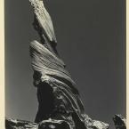 Edward Weston - Drift Log Crescent Beach