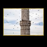 Crows flying around the minaret