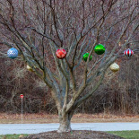 Why use small tree decorations? (N Country Club Dr.+Danforth St.)