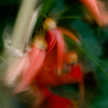Slow shutter subject or camera movement #3