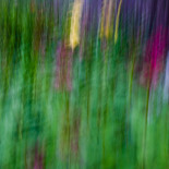 Slow shutter subject or camera movement #5