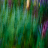 Slow shutter subject or camera movement #6