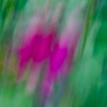 Slow shutter subject or camera movement #8