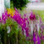 Slow shutter subject or camera movement #9