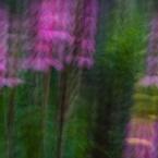 Slow shutter, stroboscopic image #6