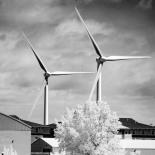 Wind turbines on the bay