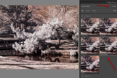 Profile Browser in Lightroom