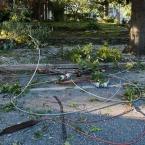 Wires were on the ground