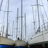 Masts in the air