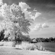 Pawtuxet Cove, infrared B&W