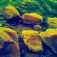 Pawtuxet Cove, infrared false colors