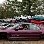 Cars, cars everywhere