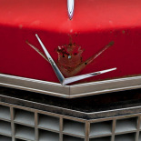 The font end is unmistakably Cadillac in red