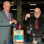 Karma Winner 2017 with George (on the right) and the judge