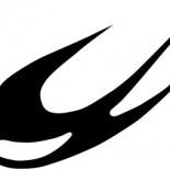 Kirlangic Logo
