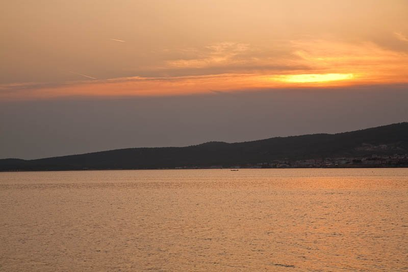 Sea Urchin Sunset