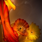 Organic works of Dale Chihuly
