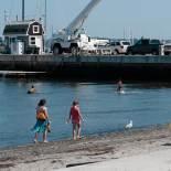 Mina and Elif collecting seashells on the seashore
