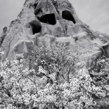 Fairy chimneys in spring, Cappadocia