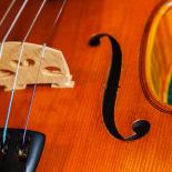 A special violin