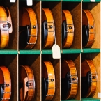 Special violins in their private compartments