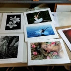 Sample Prints