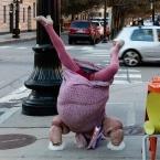 Anita Crackinstuff doing a headstand