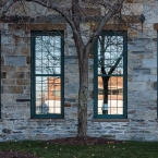 Trees and Windows