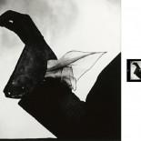 Irving Penn - Kerchief, Glove