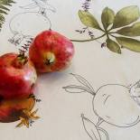 Cemal Ekin - Pomogranate Rising