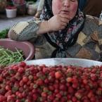 Vendor, Bartin, Turkey