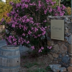 Entrance to Corvus tasting and sale facility