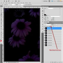 Multiple images opened as layers in Photoshop