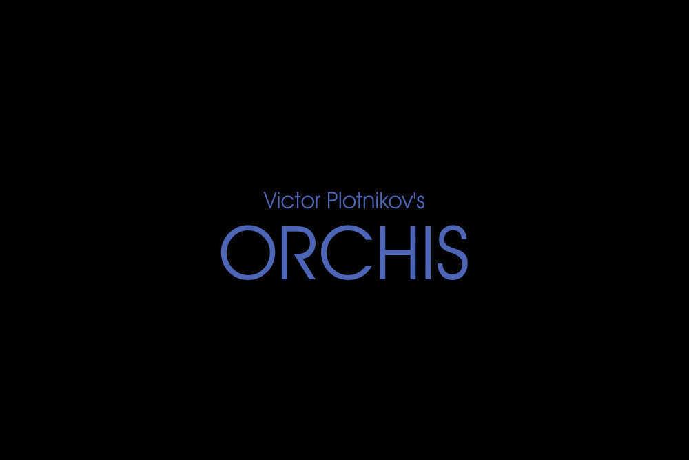 Orchis by Viktor Plotnikov