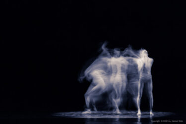 Disarmed - Greta Hodgkinson