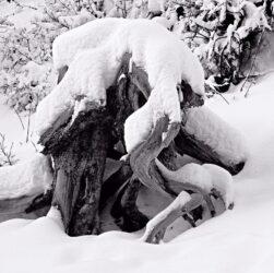 Snow, Utah
