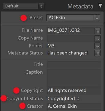 Lightroom Metadata Panel