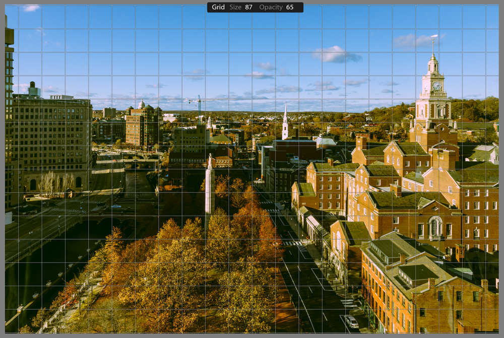 Grid Size and Opacity Controls